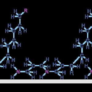 polyamines adsorption onto metal surface